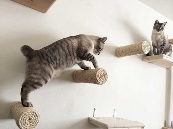 cat furniture floating posts
